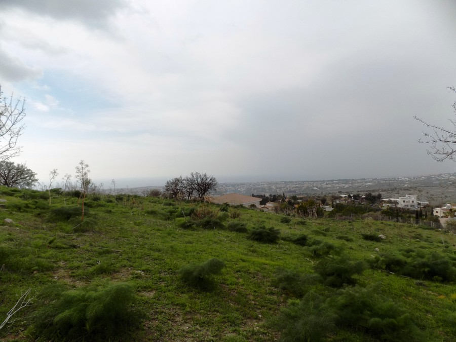 For Sale Residential Plot in Armou
