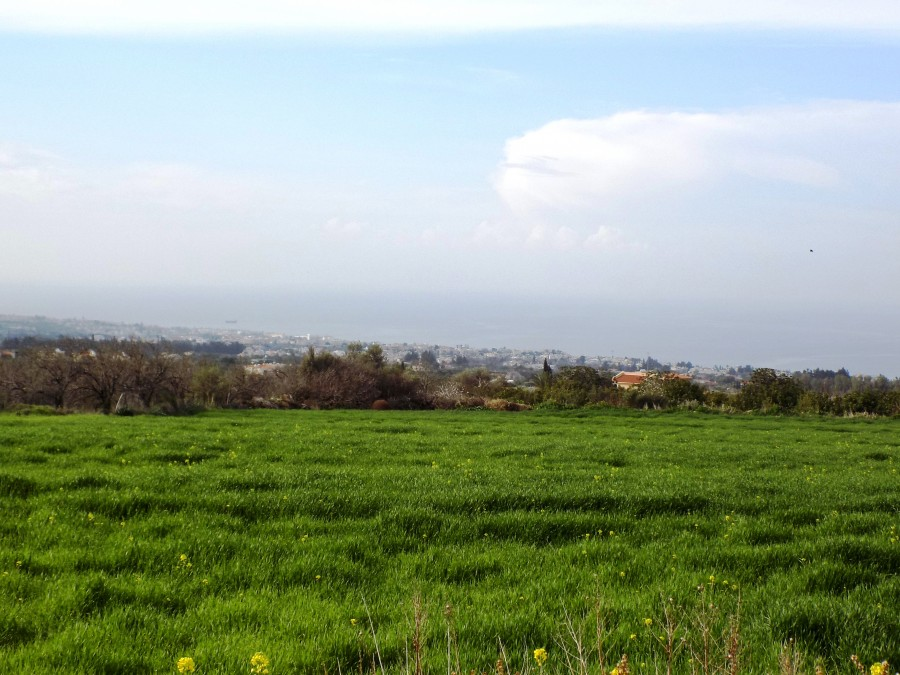 For Sale Residential Land in Tala